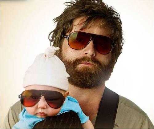 zach galifianakis hangover pictures. zach galifianakis