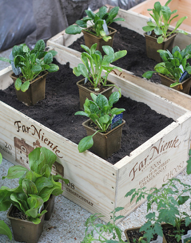 create a beautifully simple spring garden with wooden wine