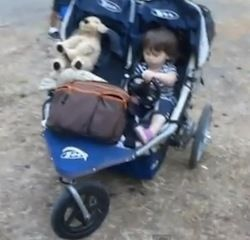 mechanized stroller