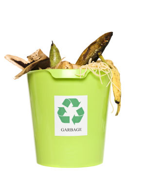 food in recycle bin
