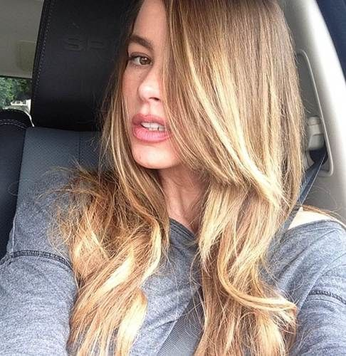Sofia Vergara blond