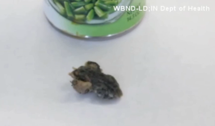 frog in green beans
