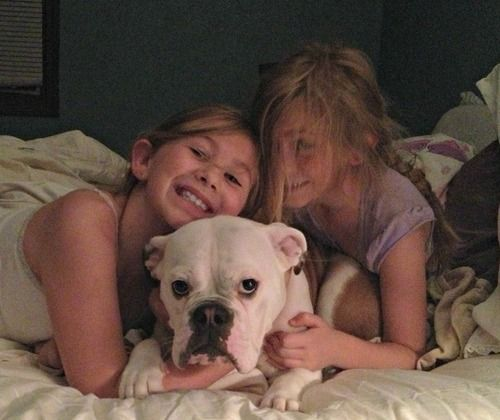 kids & bulldog