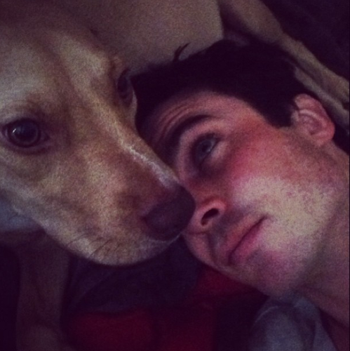 ian and dog