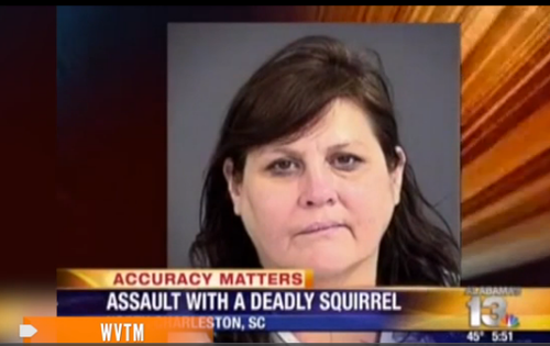 assault with squirrel