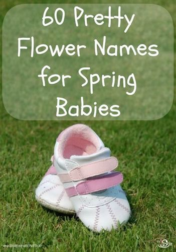 60 pretty spring flower names