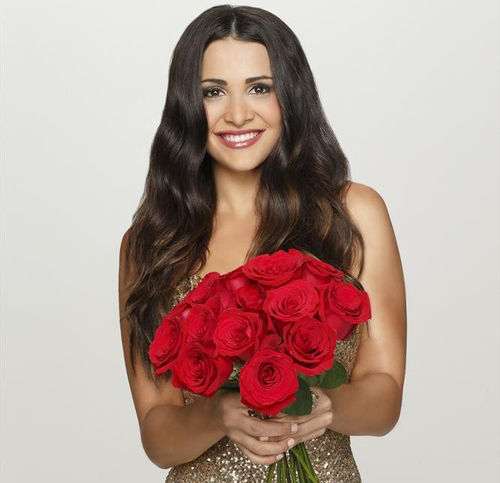 the bachelorette andi dorfman
