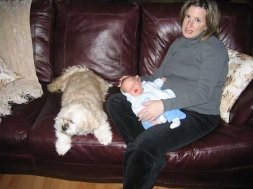 overwhelmed with baby and dog