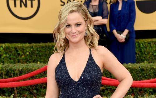 Amy Poehler Stirs Pregnancy Rumors With Red Carpet 'Bump ...