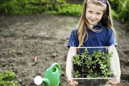 girl helping plant in the garden