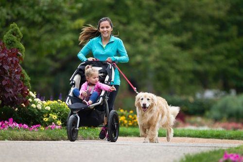 mom jogging with stroller and dog