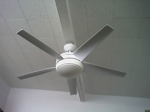 ceiling fan stimming
