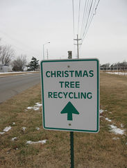 five uses for your christmas tree