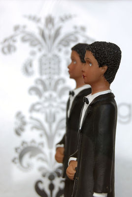 gay marriage topper