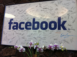 facebook white board
