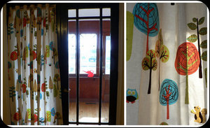 shower curtain window covering