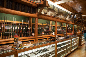 gun case store cases