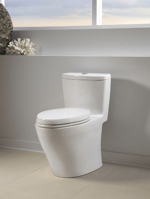 Low-flush toilet saves water