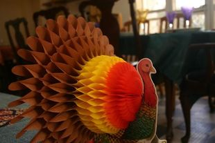 turkey thanksgiving decoration