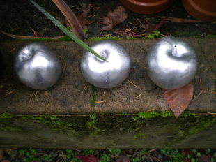 three silver apples on garden wall