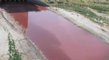 texas lake turns blood red