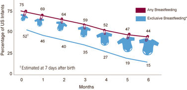 number of infants bfing by month